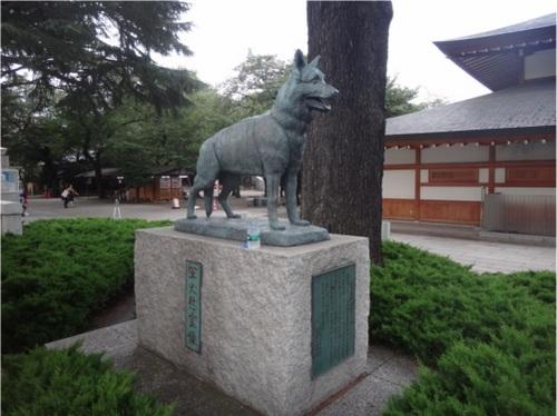 14_軍用犬.JPG