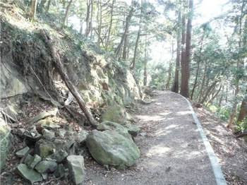 富山観音参道2.JPG